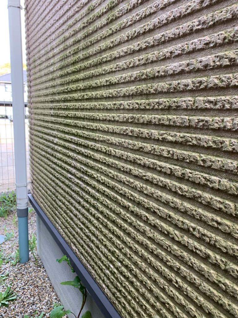外壁にコケが…!! 豊田市 外壁塗装・屋根塗装専門ペイントスタジオ